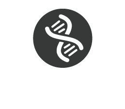 Fortalece el sistema inmunologico